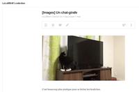 Catégorie [GIF] pour le flux RSS au lieu de [Images]