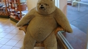 On a retrouvé l'ours Grumly
