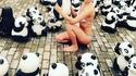 Trouvez le panda 4