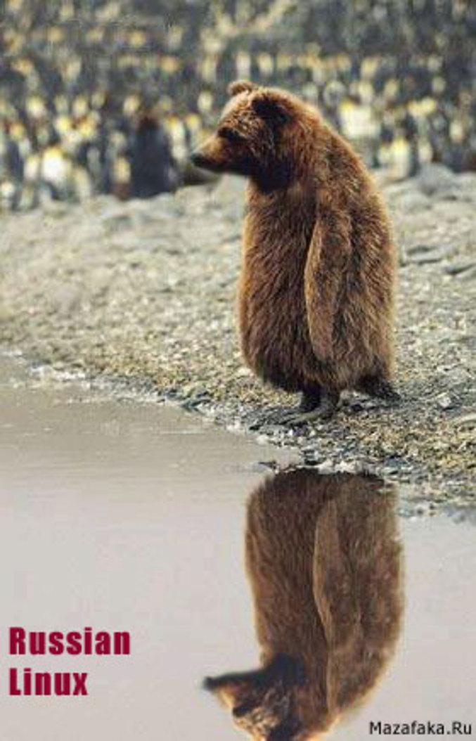 Un linux russe : mi pinguin, mi ours