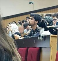 Chat va les cours ?