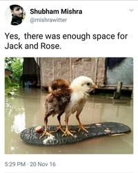 Deux poussins démontent la fin de Titanic