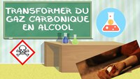 Transformer du gaz carbonique en alcool !
