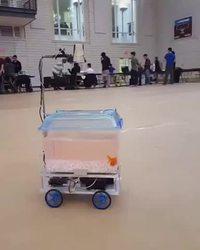 Le poisson dirige le robot
