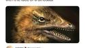 Des scientifiques ont accidentellement créé un poulet à tête de dinosaure