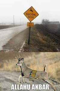 Bambi suicidaire