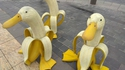Bananards