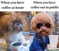 Quand tu bois un café à la maison