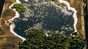 Forêt lacustre