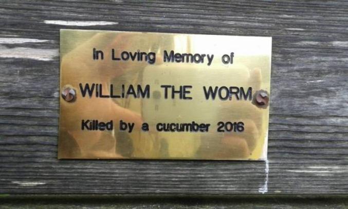 n'allez pas voir le lien si vous avez une âme sensible... la photo du cadavre s'y trouve :'( https://www.bbc.com/news/uk-england-37014050