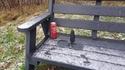 Seul sur un banc