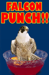 Falcon punch !