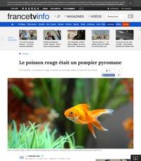 STOP le poisson rouge