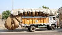 Camion couillu