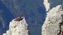 Regardez le monde de haut