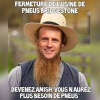 Amish, entends-tu le vol noir des corbeaux sur nos plaines?