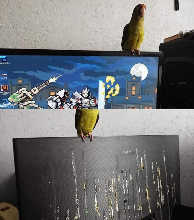 D'un autre côté, ça uniformise l'avant et l'arrière de l'écran...