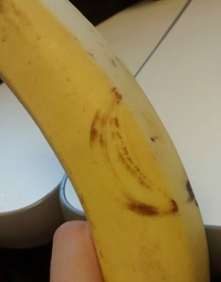 Bananaception
