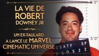 Robert Downer JR aka Anthony Stark aka Iron Man des personnalités qui se ressemblent beaucoup