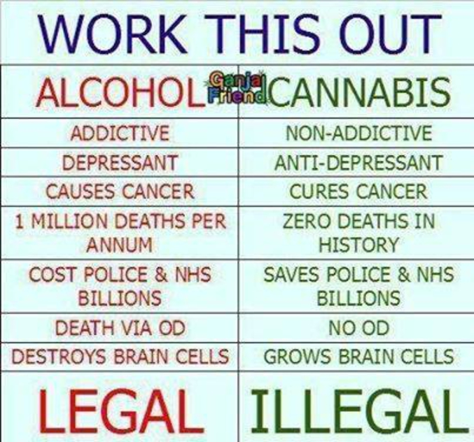 Quotes About Anger And Rage: Alcool Vs Cannabis