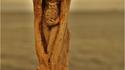 Statues en bois flotté par Debra Bernier