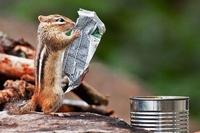 Non, la presse papier n'est pas morte !