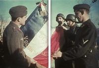 Le drapeau de la LVF (Légion des Volontaires Français)
