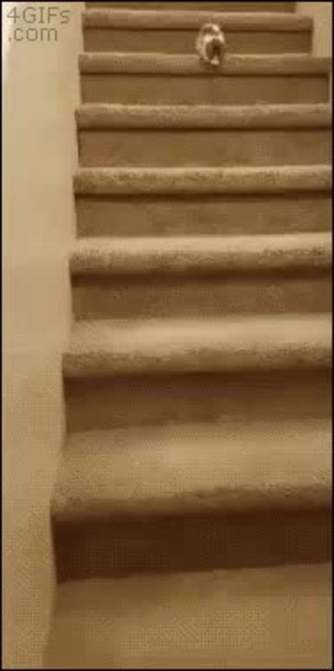 descente d 39 escalier prudente. Black Bedroom Furniture Sets. Home Design Ideas