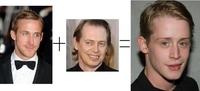 La vérité sur Kevin McCallister