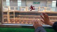 Occuper un enfant dans un train