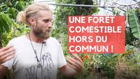 L'INCROYABLE FORÊT COMESTIBLE aux 1000 plantes et arbres
