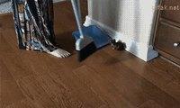 Un ramasse-chatons