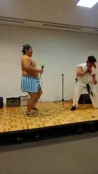 E. Honda vs Ryu