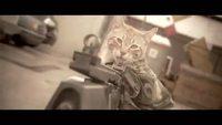 Medal of honnor cat
