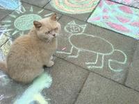 Un chat qui semble aimer le figuratif
