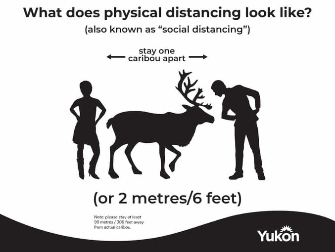 """Pour respecter la """"distanciation sociale"""". Une recommandation officielle du territoire du Yukon, dans le nord ouest canadien. Densité de population au Yukon: 0,08 hab/km² (France 107,2)"""