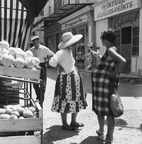 Cavaillon 1962