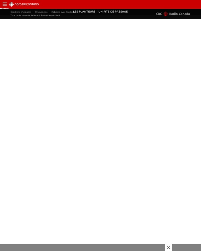 Documentaire sur les planteurs d'arbres dans le grand nord canadien où des jeunes replantent, dans des conditions extrêmes, des arbres après le passage des exploitants industriels du bois. Chaque arbre arraché doit être replanté soit environ 260 millions d'arbres en 3 mois. Météo, insectes voraces et épuisement physique au menu. https://ici.radio-canada.ca/regions/special/2018/les-planteurs/index-2.html