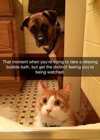 Se relaxer dans son bain moussant