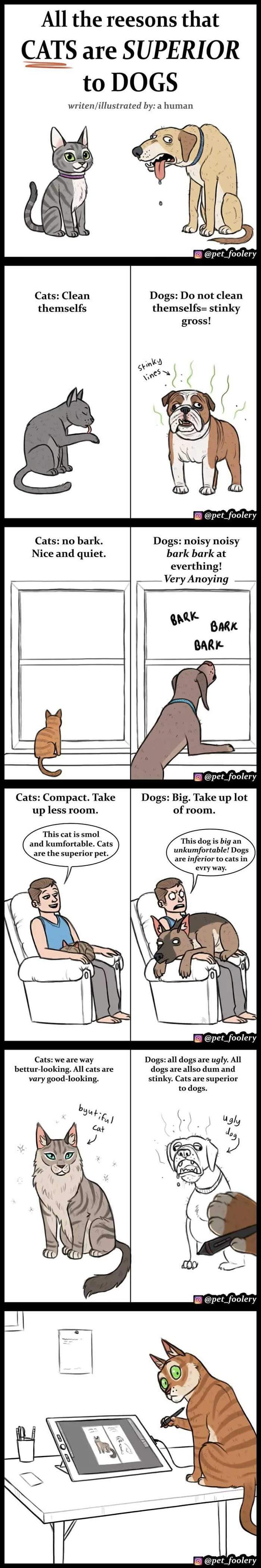 Toutes les raisons pour lesquelles les chats sont supérieurs aux chiens. Écrit et dessiné par : un humain.
