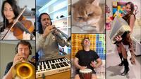 Une autre version de la musique du chat postée le 29/06 par Ski-walker.