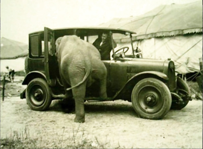 """...4 éléphants dans une voiture!"""""""