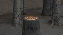 Pizza au f... non, non, au bois tout simplement !
