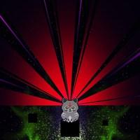 Pryapisme - Un druide est giboyeux lorsqu'il se prend pour un neutrino