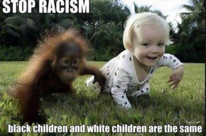 Les enfants noirs et les enfants blancs sont identiques.