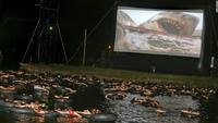 Aaaah le cinéma en plein air, j'adooooore !