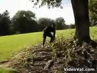 Le rap du ninja