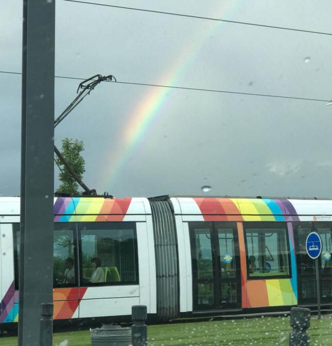 Un tramway coloré.