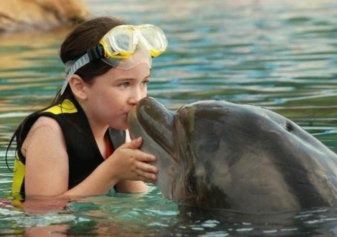 Site de rencontre amoureux des animaux