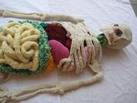 Ma remière passion : le tricot ...